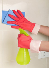 cleaning sprayer