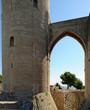 Pont de la tour de l'Hommage du château de Bellver à Palma de Ma