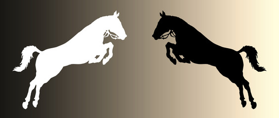 horses jump vector silhouette