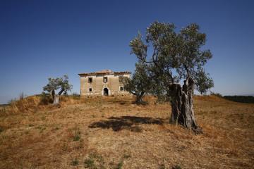 Lazio, panorama di campagna con casolare abbandonato