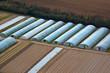 serres agricole vue du ciel