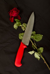 Big knife with half dried red rose