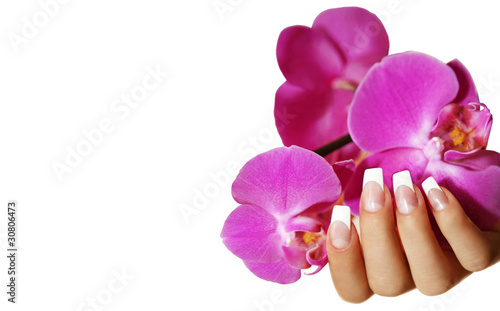 Hand mit Orchidee