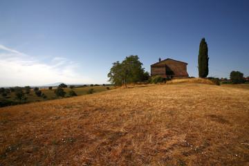 Lazio, panorama  estivo di campagna