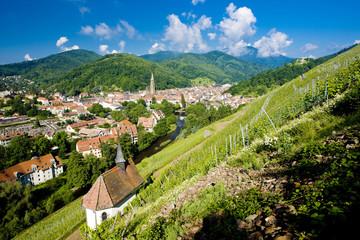 grand cru vineyard and Chapel of St. Urban, Thann,Alsace,France