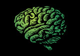 human brain isolated silhouette green illustration poster