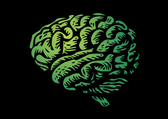human brain isolated silhouette green illustration