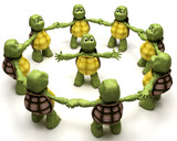 Tortoise leading a team