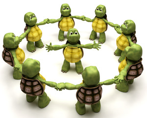 Tortoise leading a team