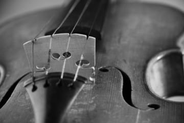 Close up on violin