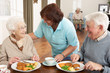 Senior Couple Being Served Meal By Carer - 30838671