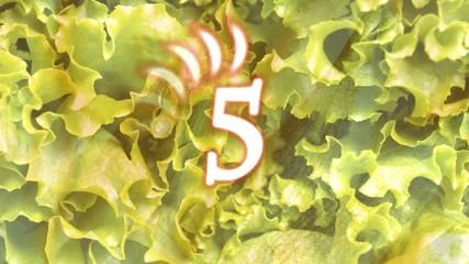 カウントダウン野菜01