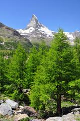 Beautiful mountain Matterhorn - Swiss Alps