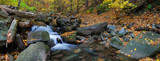 Autumn creek panorama