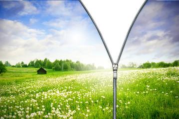 Zipper unzipped green field.