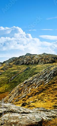 wild terrain