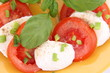 Caprese salad - tomatoes, mozzarella with basil and parsley