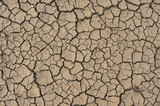 Dried Earth Background