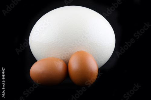 Two kind of eggs