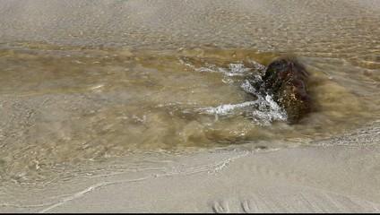Cours d'eau sur la plage