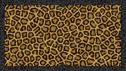Background para ilustracion: leopardo