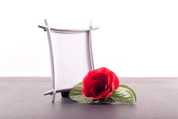 Rose and a Blank Photo Frame