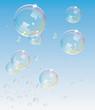 Transparent Bubbles@ Vector backdrop