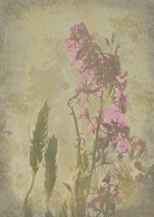 old and worn flower paper texture background