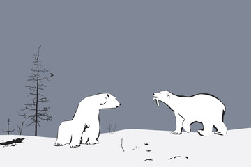 Two Polar Bears, illustration