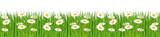 Čerstvé zelené trávě banner s sedmikrásky
