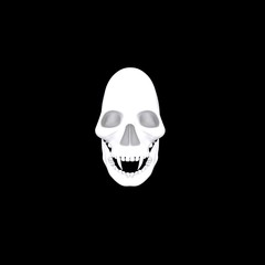 White 3d Skull On Dark Background