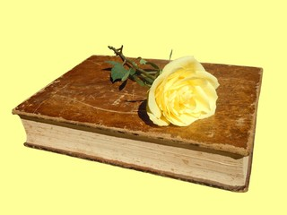 antique book and yellow rose