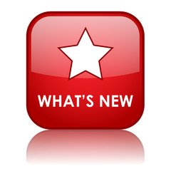 """WHAT'S NEW"" Web Button (products services news find out more)"