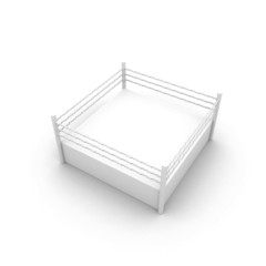 3d Fight Ring