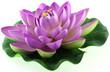 fleur artificielle de nénuphar mauve