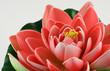 fleur artificielle de nénuphar rose