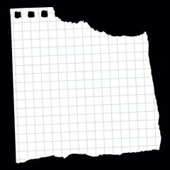 Spiral Notebook Paper - 6