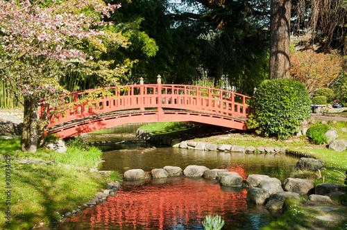 Jardin japonais photo libre de droits sur la banque d for Achat jardin japonais