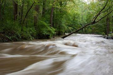 Hibernia Park flooding