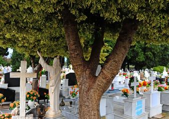 Greek Orthodox Cemetery