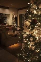 Christmas tree lit with fairylights