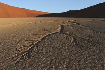 Dead Vlei, Namib Desert, Namibia