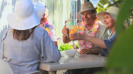 Elderly friends having an aperitif