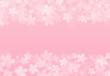 桜cg01