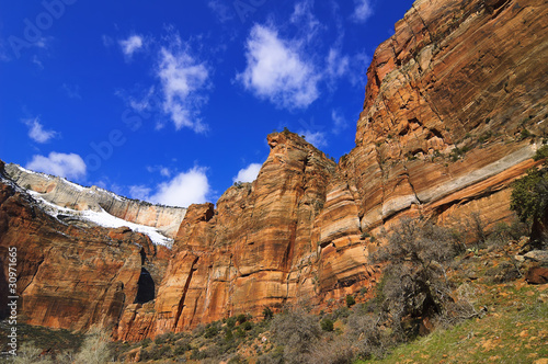 Zion National Park in spring