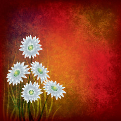 grunge illustration with white flowers on red