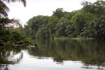 Tortuguero reservation Costa Rica