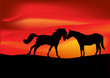 two horses at red sunset illustration