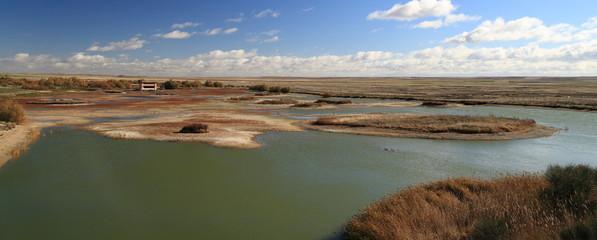Reserva Natural de Las Lagunas de Villafáfila, Zamora.