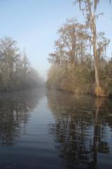 Mist on Suwannee River - Okefenokee Swamp, Georgia